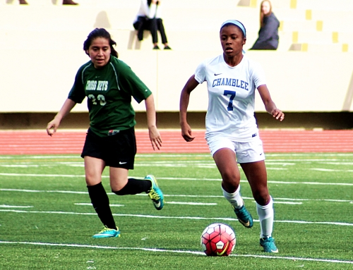 Seven of 17 DCSD State Soccer Playoff Participants Open Play Tonight